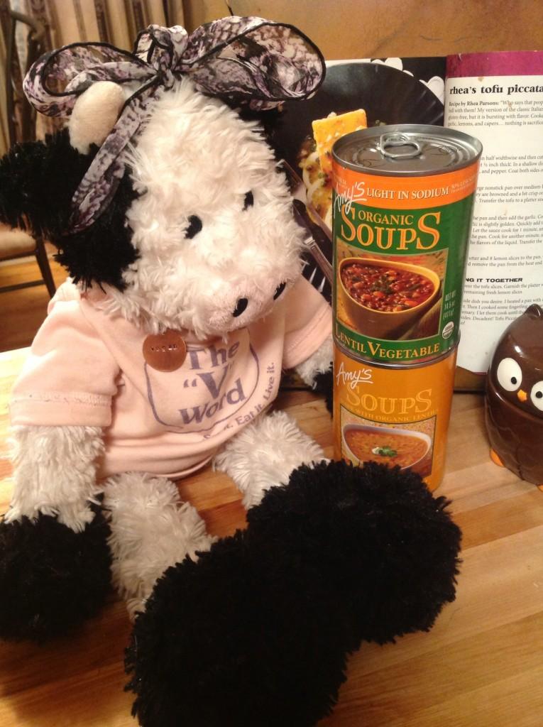 Amys soups