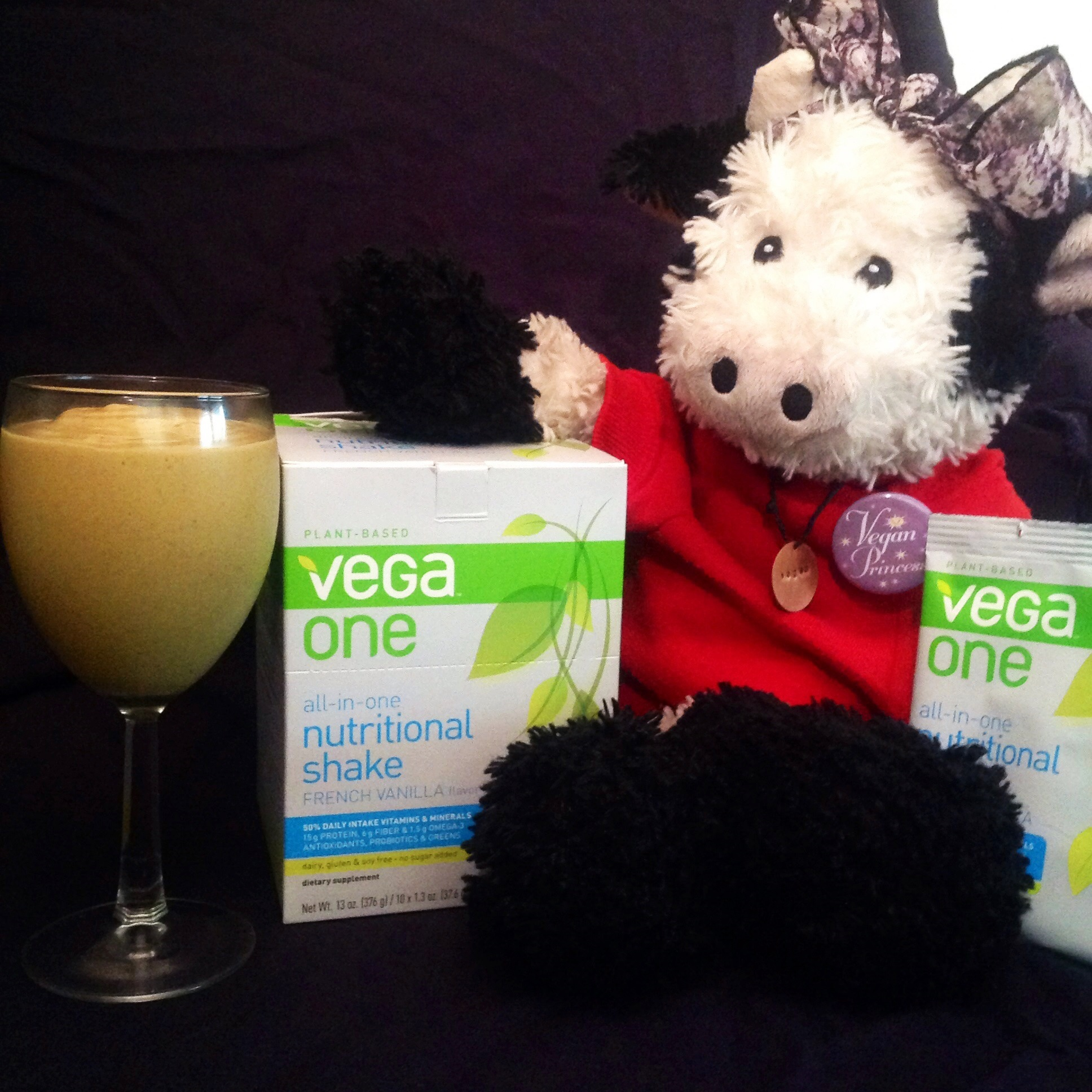 Vega One Pumpkin Pie Smoothie (10)