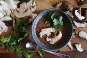 Raw-Creamy-Mushroom-Soup-460x306