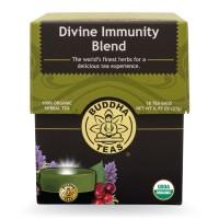 _front_-_0089_divine_immunity_1