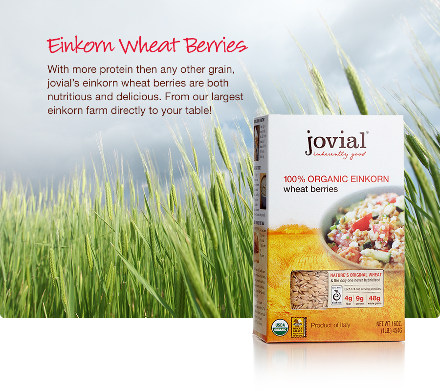 jovial-shop-home-wheatberries.900x798