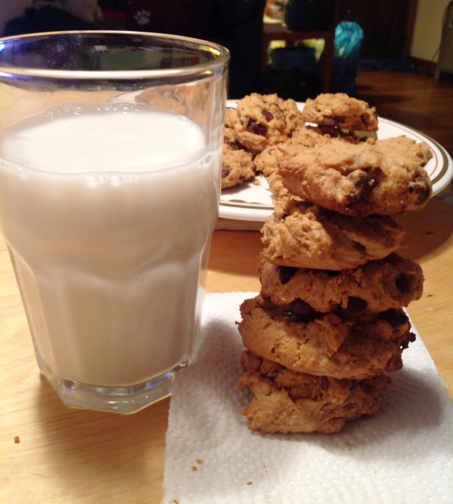 flourless cookies (11)