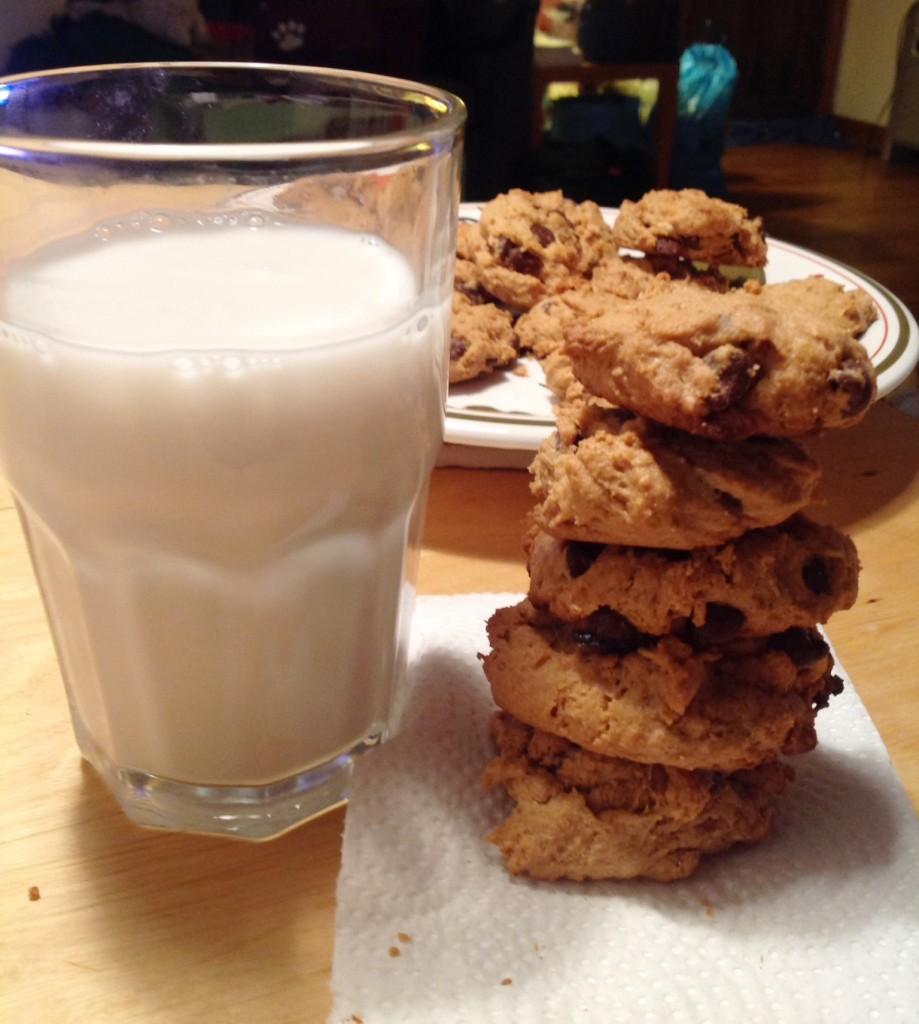 flourless Cookies (11)